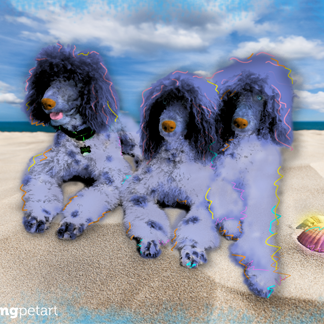 Poodle Pop Art